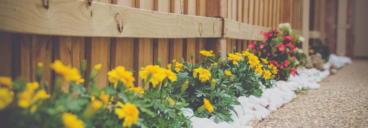 What You Should Know Before Paving Your Backyard