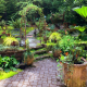 What to Look For in a Landscape Company